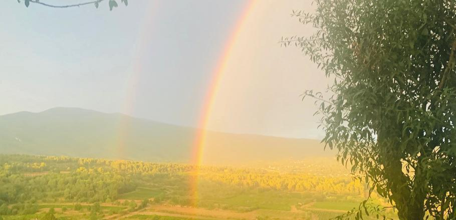 The beauty of nature, at the foot of Mont Ventoux